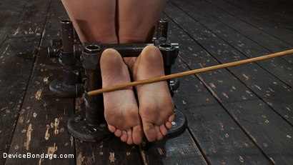 Photo number 6 from Q: How do you make a kitten scream? shot for Device Bondage on Kink.com. Featuring Lindy Lane in hardcore BDSM & Fetish porn.