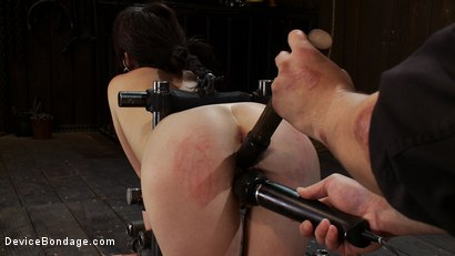 Photo number 7 from Q: How do you make a kitten scream? shot for Device Bondage on Kink.com. Featuring Lindy Lane in hardcore BDSM & Fetish porn.