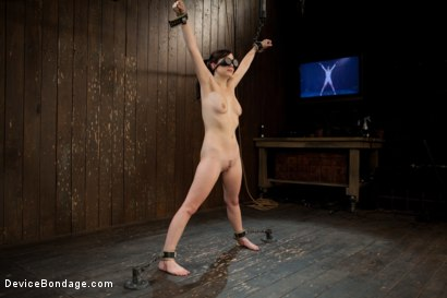 Photo number 1 from Q:  What's the difference between a precious baby kitten and a head-thrashing cum-beast?  shot for Device Bondage on Kink.com. Featuring Lindy Lane in hardcore BDSM & Fetish porn.