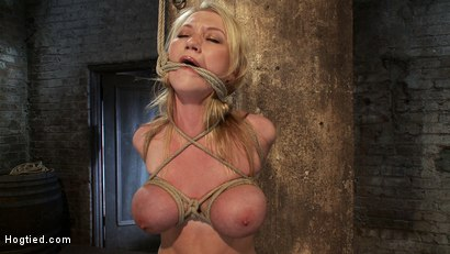 Photo number 6 from ANGELIC SUFFERING  shot for Hogtied on Kink.com. Featuring Madison Scott in hardcore BDSM & Fetish porn.