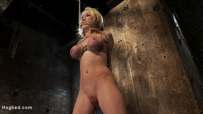 Photo number 7 from ANGELIC SUFFERING  shot for Hogtied on Kink.com. Featuring Madison Scott in hardcore BDSM & Fetish porn.