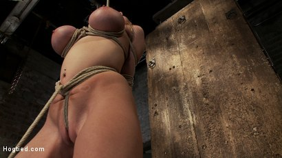 Photo number 8 from ANGELIC SUFFERING  shot for Hogtied on Kink.com. Featuring Madison Scott in hardcore BDSM & Fetish porn.