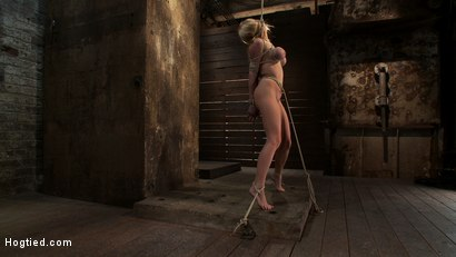 Photo number 9 from ANGELIC SUFFERING  shot for Hogtied on Kink.com. Featuring Madison Scott in hardcore BDSM & Fetish porn.