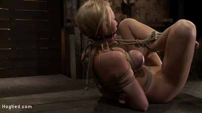 Photo number 8 from Madison Scott is Bound in a Traditional Japanese Torment Position<br>Make to Cum and Squirt. shot for Hogtied on Kink.com. Featuring Madison Scott in hardcore BDSM & Fetish porn.