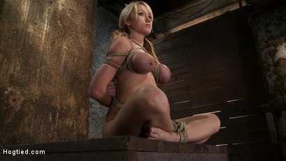 Photo number 1 from Madison Scott is Bound in a Traditional Japanese Torture Position<br>Make to Cum and Squirt. shot for Hogtied on Kink.com. Featuring Madison Scott in hardcore BDSM & Fetish porn.