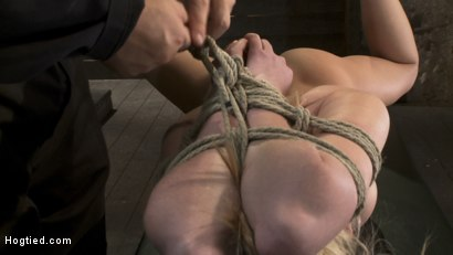 Photo number 4 from Category 5<br>Modified Hogtied Suspension  shot for Hogtied on Kink.com. Featuring Madison Scott in hardcore BDSM & Fetish porn.
