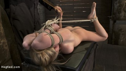 Photo number 6 from Category 5<br>Modified Hogtied Suspension  shot for Hogtied on Kink.com. Featuring Madison Scott in hardcore BDSM & Fetish porn.