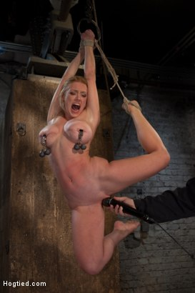Photo number 9 from Part 1 of 4 of the<br> May Live show! shot for Hogtied on Kink.com. Featuring Isis Love and Dee Williams in hardcore BDSM & Fetish porn.
