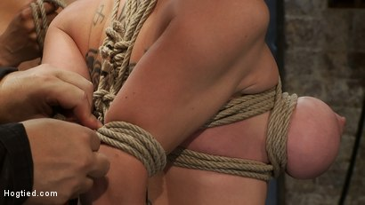 Photo number 3 from Darling Suffers her Third Category 5 Position<br>Brutally Fisted and Made to<br>Squirt and Cum!! shot for Hogtied on Kink.com. Featuring Isis Love and Dee Williams in hardcore BDSM & Fetish porn.