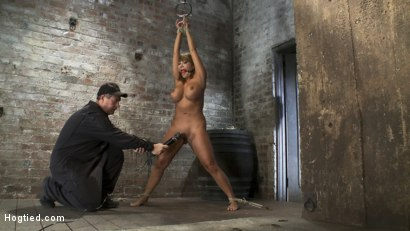 Photo number 7 from BIG TITTED MILF<BR> Tip toes and made to cum! shot for Hogtied on Kink.com. Featuring Ava Devine in hardcore BDSM & Fetish porn.