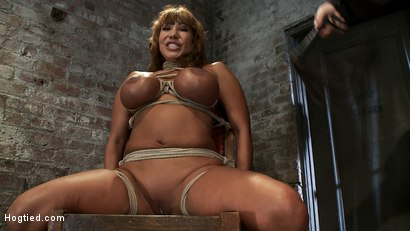 Photo number 3 from Classic Hogtied<br>Big Titted MILF in the chair<br>Orgasm after Orgasm no Mercy shot for Hogtied on Kink.com. Featuring Ava Devine in hardcore BDSM & Fetish porn.