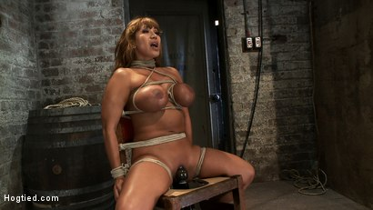 Photo number 5 from Classic Hogtied<br>Big Titted MILF in the chair<br>Orgasm after Orgasm no Mercy shot for Hogtied on Kink.com. Featuring Ava Devine in hardcore BDSM & Fetish porn.