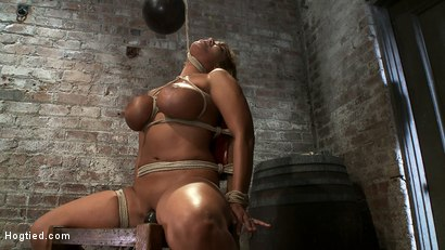 Photo number 13 from Classic Hogtied<br>Big Titted MILF in the chair<br>Orgasm after Orgasm no Mercy shot for Hogtied on Kink.com. Featuring Ava Devine in hardcore BDSM & Fetish porn.