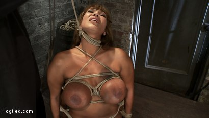 Photo number 7 from Classic Hogtied<br>Big Titted MILF in the chair<br>Orgasm after Orgasm no Mercy shot for Hogtied on Kink.com. Featuring Ava Devine in hardcore BDSM & Fetish porn.