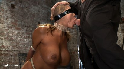 Photo number 6 from Amazingly hot MILF with huge tits and perfect ass<br> Tightly bound and sucking cock. shot for Hogtied on Kink.com. Featuring Ava Devine in hardcore BDSM & Fetish porn.