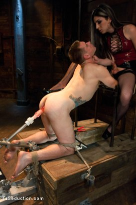 Photo number 2 from Play things  shot for TS Seduction on Kink.com. Featuring Aly Sinclair and John Jammen in hardcore BDSM & Fetish porn.