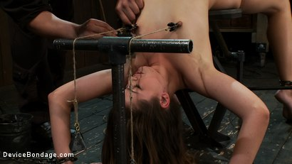 Photo number 7 from Allie, meet our new friend Jack. shot for Device Bondage on Kink.com. Featuring Allie Haze in hardcore BDSM & Fetish porn.