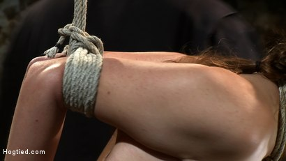 Photo number 14 from Thigh Highs and Cotton Panties<br>We're going to Hell shot for Hogtied on Kink.com. Featuring Allie Haze in hardcore BDSM & Fetish porn.
