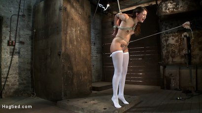 Photo number 15 from Thigh Highs and Cotton Panties   We're going to Hell shot for Hogtied on Kink.com. Featuring Allie Haze in hardcore BDSM & Fetish porn.