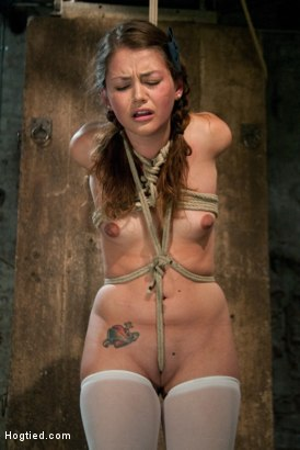 Photo number 7 from Thigh Highs and Cotton Panties<br>We're going to Hell shot for Hogtied on Kink.com. Featuring Allie Haze in hardcore BDSM & Fetish porn.