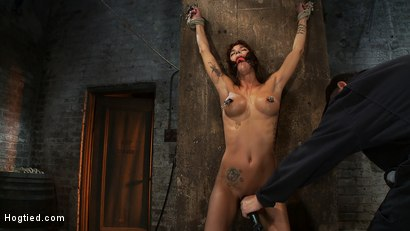 Photo number 5 from How much can a person take?<br>Obviously quite a lot, especially when they're so helpless. shot for Hogtied on Kink.com. Featuring Gia DiMarco in hardcore BDSM & Fetish porn.