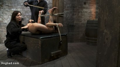 Photo number 11 from Squirt Fest 2010<br>Like a Fucking Fountain! shot for Hogtied on Kink.com. Featuring Gia DiMarco in hardcore BDSM & Fetish porn.
