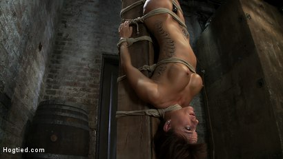 Photo number 1 from There's something you  Don't see everyday. shot for hogtied on Kink.com. Featuring Gia DiMarco in hardcore BDSM & Fetish porn.