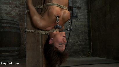 Photo number 14 from There's something you   Don't see everyday. shot for Hogtied on Kink.com. Featuring Gia DiMarco in hardcore BDSM & Fetish porn.
