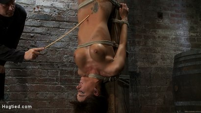 Photo number 4 from There's something you   Don't see everyday. shot for Hogtied on Kink.com. Featuring Gia DiMarco in hardcore BDSM & Fetish porn.