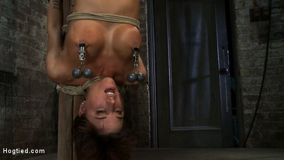 Photo number 6 from There's something you  Don't see everyday. shot for hogtied on Kink.com. Featuring Gia DiMarco in hardcore BDSM & Fetish porn.