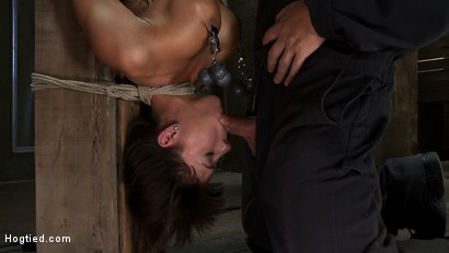 Photo number 10 from There's something you  Don't see everyday. shot for hogtied on Kink.com. Featuring Gia DiMarco in hardcore BDSM & Fetish porn.