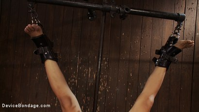 Photo number 5 from Q: Why does it make us so hard to see a girl hanging upside down? shot for Device Bondage on Kink.com. Featuring Jynx Maze in hardcore BDSM & Fetish porn.