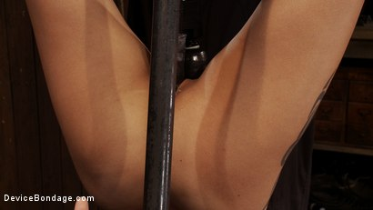 Photo number 6 from Q: Why does it make us so hard to see a girl hanging upside down? shot for Device Bondage on Kink.com. Featuring Jynx Maze in hardcore BDSM & Fetish porn.