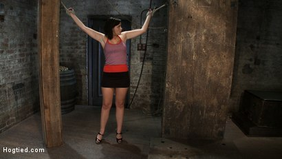 Photo number 1 from Girl next door gets bound spread, pussy flogged  Nipples tormented, made to cum like a common whore shot for Hogtied on Kink.com. Featuring Brooke Lee Adams in hardcore BDSM & Fetish porn.