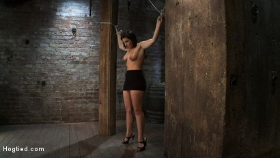 Photo number 4 from Girl next door gets bound spread, pussy flogged  Nipples tormented, made to cum like a common whore shot for Hogtied on Kink.com. Featuring Brooke Lee Adams in hardcore BDSM & Fetish porn.