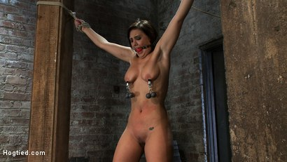 Photo number 7 from Girl next door gets bound spread, pussy flogged  Nipples tormented, made to cum like a common whore shot for Hogtied on Kink.com. Featuring Brooke Lee Adams in hardcore BDSM & Fetish porn.