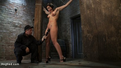 Photo number 8 from Girl next door gets bound spread, pussy flogged  Nipples tormented, made to cum like a common whore shot for Hogtied on Kink.com. Featuring Brooke Lee Adams in hardcore BDSM & Fetish porn.
