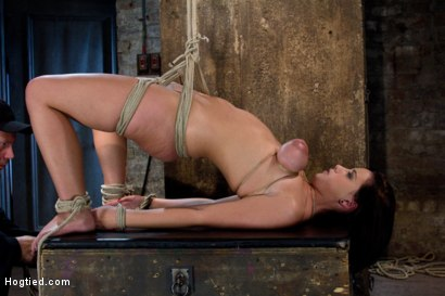 Photo number 1 from Girl next door suffers<br>Category 5 Suspension<br> Extreme Orgasms to sub-space. shot for Hogtied on Kink.com. Featuring Brooke Lee Adams in hardcore BDSM & Fetish porn.