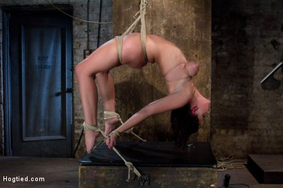 Photo number 11 from Girl next door suffers<br>Category 5 Suspension<br> Extreme Orgasms to sub-space. shot for Hogtied on Kink.com. Featuring Brooke Lee Adams in hardcore BDSM & Fetish porn.