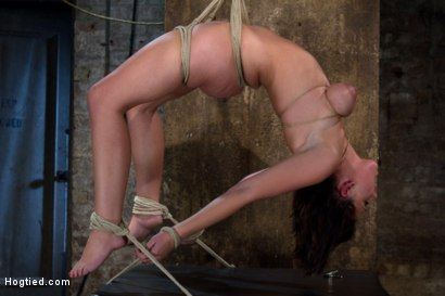 Photo number 12 from Girl next door suffers<br>Category 5 Suspension<br> Extreme Orgasms to sub-space. shot for Hogtied on Kink.com. Featuring Brooke Lee Adams in hardcore BDSM & Fetish porn.