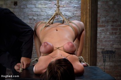Photo number 3 from Girl next door suffers<br>Category 5 Suspension<br> Extreme Orgasms to sub-space. shot for Hogtied on Kink.com. Featuring Brooke Lee Adams in hardcore BDSM & Fetish porn.