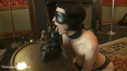 Photo number 12 from Slave torn is Stuffed and Whipped shot for The Upper Floor on Kink.com. Featuring Cherry Torn in hardcore BDSM & Fetish porn.