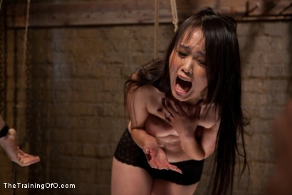 Photo number 10 from The Training of Madeleine , Day One shot for The Training Of O on Kink.com. Featuring Madeleine Mei and Mark Davis in hardcore BDSM & Fetish porn.