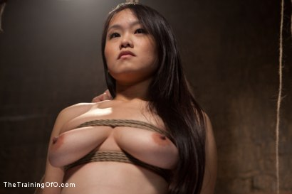 Photo number 14 from The Training of Madeleine , Day One shot for The Training Of O on Kink.com. Featuring Madeleine Mei and Mark Davis in hardcore BDSM & Fetish porn.