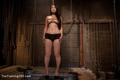 Photo number 13 from The Training of Madeleine , Day One shot for The Training Of O on Kink.com. Featuring Madeleine Mei and Mark Davis in hardcore BDSM & Fetish porn.