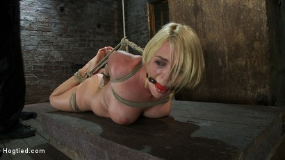 Photo number 12 from Tight is Tight shot for Hogtied on Kink.com. Featuring Krissy Lynn in hardcore BDSM & Fetish porn.