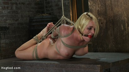 Photo number 13 from Tight is Tight shot for Hogtied on Kink.com. Featuring Krissy Lynn in hardcore BDSM & Fetish porn.