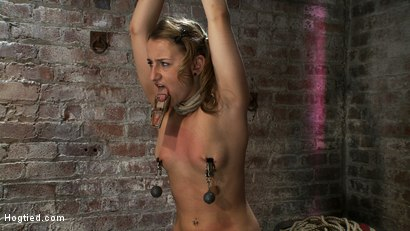 Photo number 5 from PIG TAILS<BR>and<br>THIGH HIGHS shot for Hogtied on Kink.com. Featuring Jessie Cox in hardcore BDSM & Fetish porn.