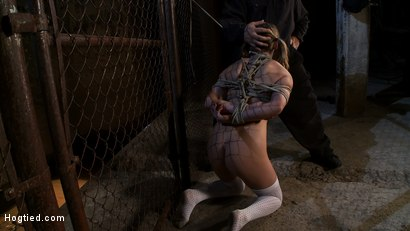 Photo number 5 from Pigtailed girl with thigh highs is bound, made to suck & swallow cock<br>Brutal BJ.  Suck it bitch. shot for Hogtied on Kink.com. Featuring Jessie Cox in hardcore BDSM & Fetish porn.