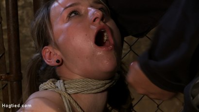 Photo number 12 from Pigtailed girl with thigh highs is bound, made to suck & swallow cock<br>Brutal BJ.  Suck it bitch. shot for Hogtied on Kink.com. Featuring Jessie Cox in hardcore BDSM & Fetish porn.